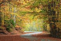 Scenic Mountain Road, Rila Mountains, Bulgaria