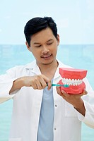 Dentist showing the correct way to brush teeth