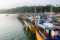 Mirisa, Southern Province, Sri Lanka, Indian Ocean, Asia