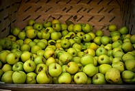 Large crate of green apples