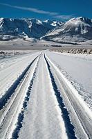 Tyre track on snow