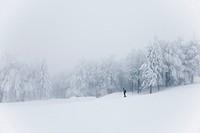 Monte Cimone, Tana del Lupo ski track