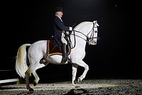 Lipizzan Horse with rider Alojz Lah performing a piaffe