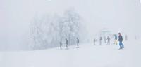 Monte (mount) Cimone, Tana del Lupo ski track