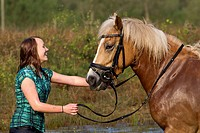 Haflinger Horse. Young woman with her horse in a pond