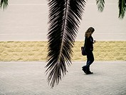 Girl and Palm tree, Valencia, Spain