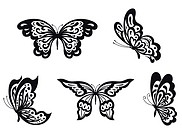 Set of black butterfly isolated on white. Vector i