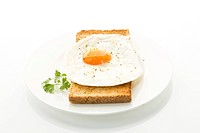 Toasted bread with fried egg on plate