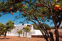 Typical house of Ibiza Island, Spain