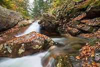 Talford Brook during the autumn months in Thornton, New Hampshire USA