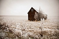 Usa, Washington State, Sepia Winter Barn With Hoar Frost; Walla Walla