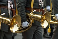 33. Austrian brass celebration in Vienna