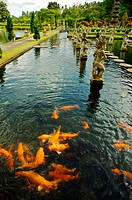 Indonesia, Bali, Karangasem, Tirtagangga Water Palace Gardens, Koi Fish In Pond