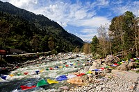 Prayer flag over a river, Manali, Himachal Pradesh, India