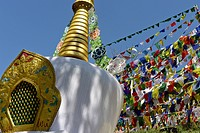 Stupa And Prayer Flags On The Ritual Circuit, The Kora, Around The Dalai Lama's Residence In Mcleod Ganj