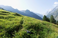 Switzerland, Val d'Anniviers, Mountain valley; Zinal