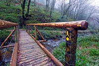 Wooden Footbridge crossing a small river at Monicknew, Slieve Bloom Mountains, County Laois, Ireland