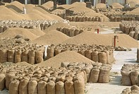 wheat grain heaps and bags , grain mandi , punjab , india