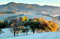 Frosty morning, Krasnik village area, Carpathian Mountains, Ivano-Frankivsk region, Ukraine