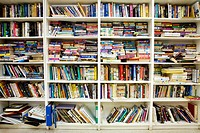 Books on bookshelves