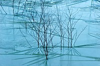 Ice in Sugel. Almansa. Albacete. Spain.