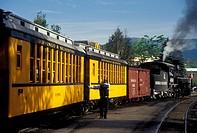 Durango, CO, Colorado, The Durango and Silverton Narrow Gauge Railroad, train