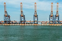 Container terminal in Rotterdam Harbor, Netherlands