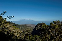 Mount Teide and island of Tenerife viewed from Momumento Natural de los Roques; La Gomera, Canary Islands, Spain