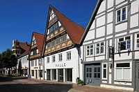 D-Lemgo, Lipper Bergland, Lippisches Bergland, Weserbergland, Teutoburg Forest / Egge Hills Nature Park, East Westphalia, North Rhine-Westphalia, NRW,...