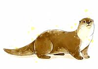 illustration painting of otter