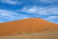 Afrika, Namibia, Namib-Wüste, Sanddünen des Sossusvlei - Namibia, 15/05/2008