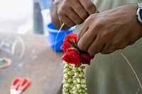 Singapore, Little India, man making flower garland