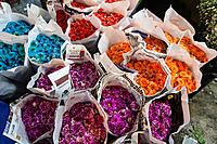 Multi coloured flowers for sale at the Yodpiman flower market, Bangkok Thailand.
