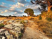 Peña Muñana track in Cadalso de los Vidrios. Madrid. Spain.
