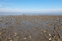 Germany, Lower Saxony, Eastern Friesland, Lower Saxon Wadden Sea National Park at low tide