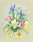 Pussy willow, iris reticulata, daffodils, tulips etc