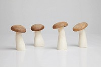 Row of four mushrooms in a row on white background