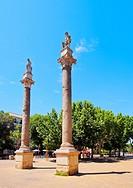Roman Columns in Alameda de Hercules in Seville, Andalusia, Spain.