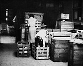 There are a few storage rooms in each camp where people keep their belongings during World War II. Thus the transfer from summer to winter equipment b...