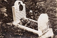 The grave and headstone of a pet dog named Dick, who departed this life on 25 January 1907 at the age of eight. He was fed on milk and fish, and was v...