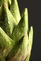 Artichoke close_up