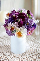 Pansies in a vase