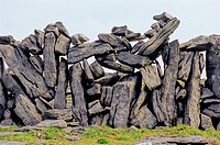 Dun Aengus is a prehistoric fort, 1100-500 BC, detail of wall.Inishmore, Aran Islands, Republic of Ireland