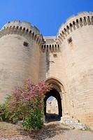 Gate of Fort Saint-André, Villeneuve-lès-Avignon, Gard, Languedoc-Roussillon, Southern France, France