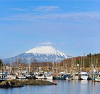 Thomsen Boat Harbor In Sitka W/Mt.Edgecumbe In Distant Southeast Alaska Spring