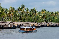 Cruise boats in Backwaters, Kerala, India