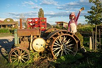 Old tractor and scarecrow, Westham Island Herb Farm, Ladner, Delta, British Columbia, Canada