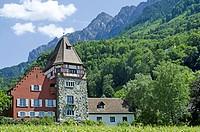 A winery at Vaduz, Liechtenstein.