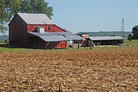 USA, Kansas, Red Barn and sheds.