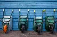 A line of wheelbarrows for boat owners to use for carrying provisions along the dock of a marina.